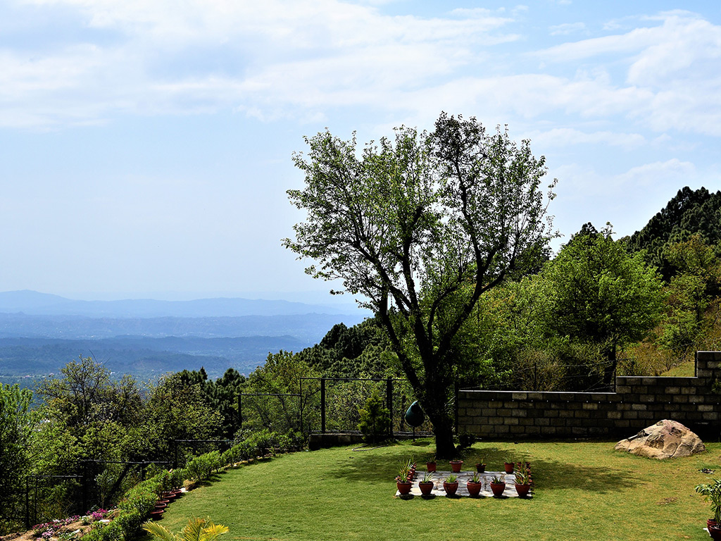 resort-lawn