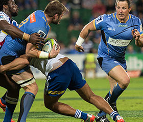 Official Resort Partner Western Force Super Rugby Franchise